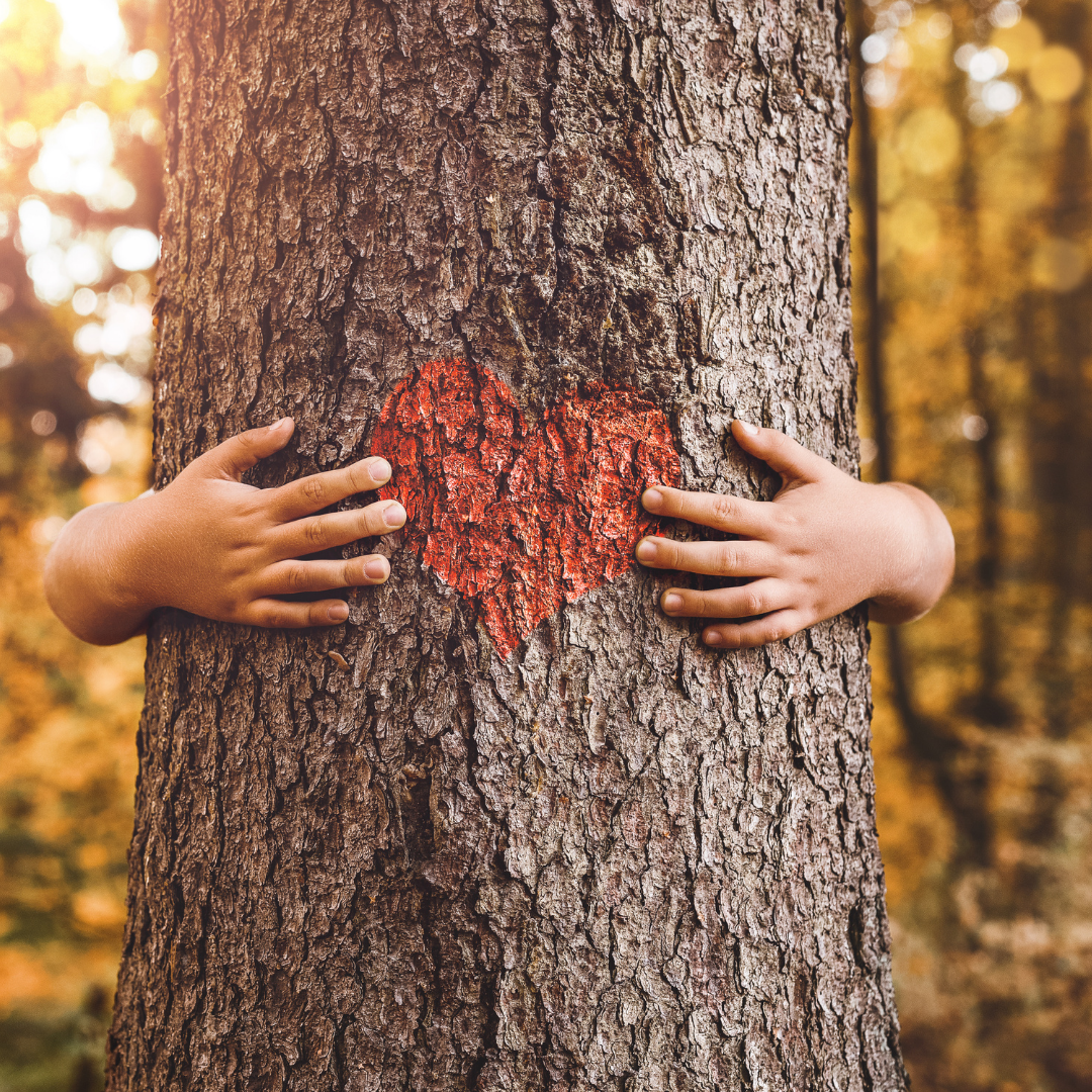 Child hugging a tree - connection with nature is a benefit of being outdoors